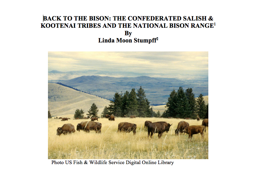 Back to the Bison Case Study Part I