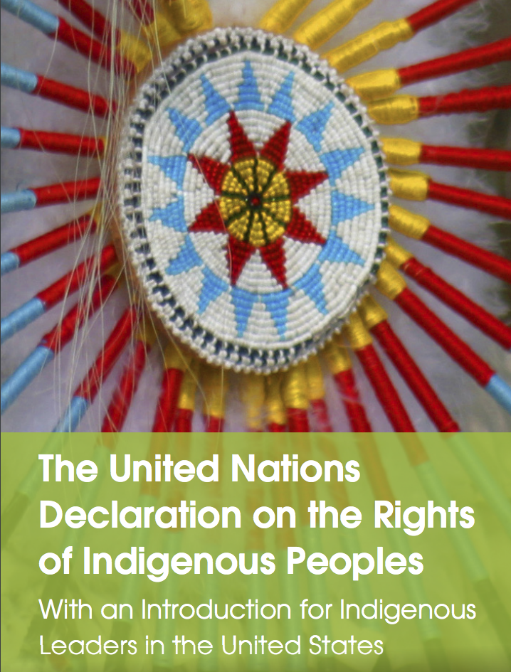 The United Nations Declaration on the Rights of Indigenous Peoples: With an Introduction for Indigenous Leaders in the United States