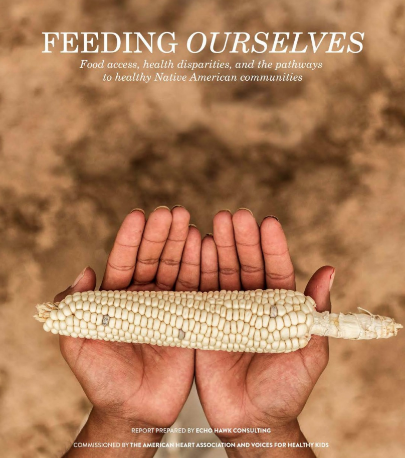 Feeding Ourselves: Food Access, Health Disparities, and the Pathways to Healthy Native American Communities