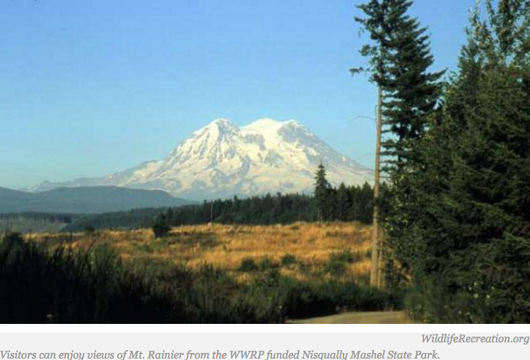 Nisqually Tribe, State Partnering on Development of Nisqually State Park