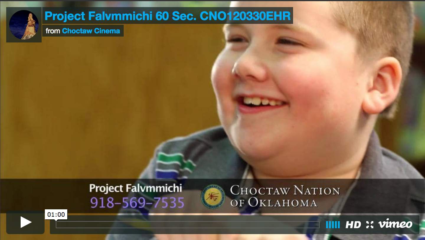 Project Falvmmichi 60