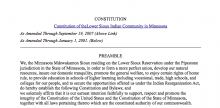 Lower Sioux Indian Community in the State of Minnesota: Governmental Structure Excerpt