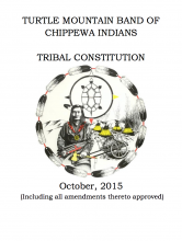 Turtle Mountain Band of Chippewa Indian: Elections Excerpt