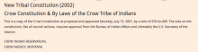 Crow Nation: Amendments Excerpt