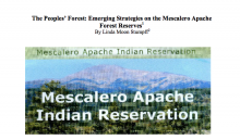 The Peoples' Forest: Emerging Strategies on the Mescalero Apache Forest Reserves