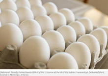 Hatching Success: Ak-Chin Indian Community's Industrial Park Home to Only Egg Producer in Arizona