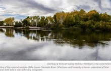 Tribal Transformation: Quechan Help Bring Lower Colorado River Habitat Back to Life