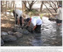 Indigenous Youth Help USFWS Restore Fish Passage on Cochiti Pueblo
