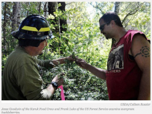 Traditional Knowledge Fuels Yurok and Karuk Habitat Restoration Project With USDA