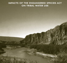 Protecting the Fish and Eating Them, Too: Impacts of the Endangered Species Act on Tribal Water Use