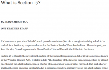 What is Section 17?