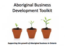 Aboriginal Business Development Toolkit
