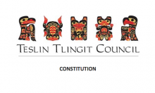 Teslin Tlingit: Governmental Structure Excerpt